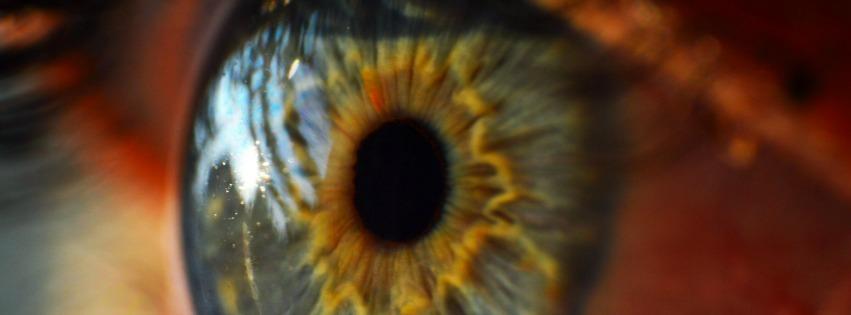 eye_picmonkeyed