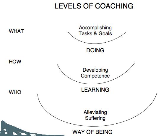 levels-of-coaching